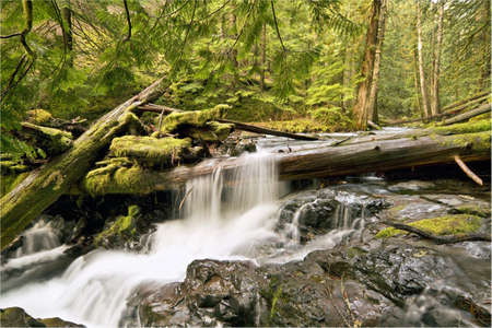 Panther Creek Falls in Skamania County Washington Stock Photo - 6450107