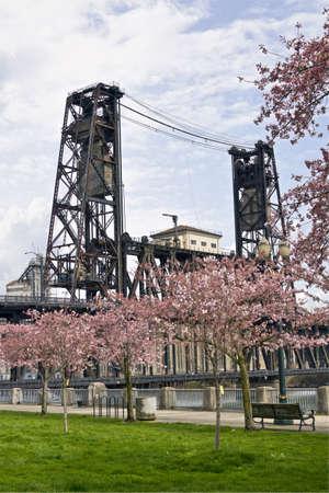 Steel Bridge at Spring Time in Portland Oregon photo