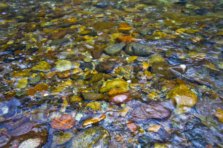 Pebble Rocks in Washougal River Columbia Gorge