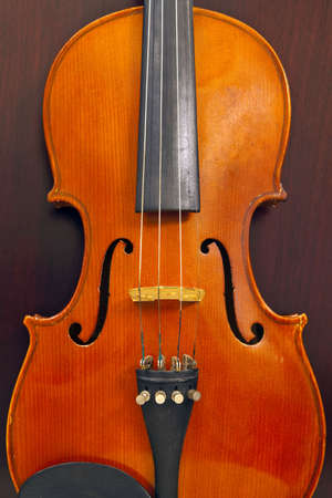 Violin Musical Instrument on Dark Wood Background Stock Photo - 6636945