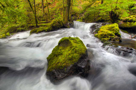 Waterfall over Moss Covered Rocks in Panther Creek Falls Stock Photo - 6636968