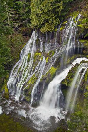 Panther Creek Falls 2 Stock Photo - 6759685