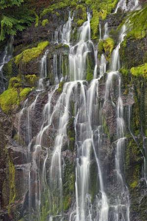 Panther Creek Falls 3 Stock Photo - 6759684