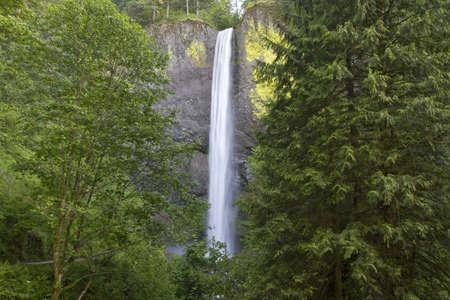 Latourell Falls in Columbia River Gorge Oregon Stock Photo - 7197301