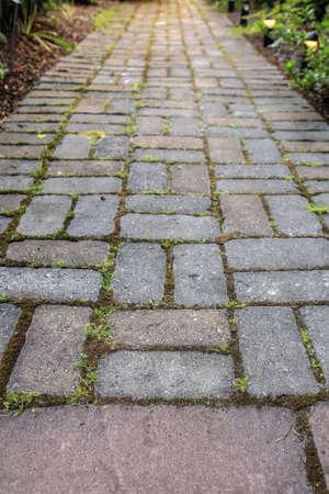 adoquines: Ruta de acceso de jard�n de adoquines de ladrillo con musgo en paisajismo