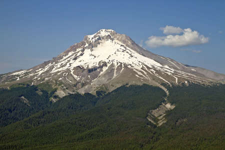 Mount Hood Scenic Northwest Forest Area Hiking Trail 2 Stock Photo - 7505487