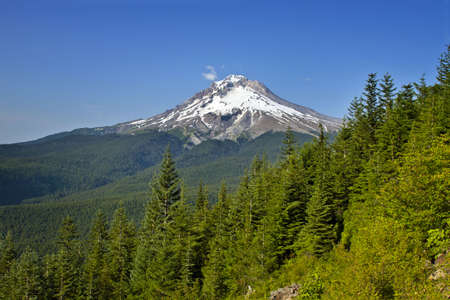 Mount Hood Scenic Northwest Forest Area Hiking Trail Stock Photo - 7505489