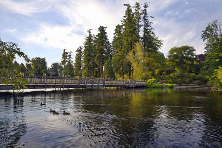 Bridge Over Crystal Springs Lake with Ducks Swimming Stock Photo - 7580672