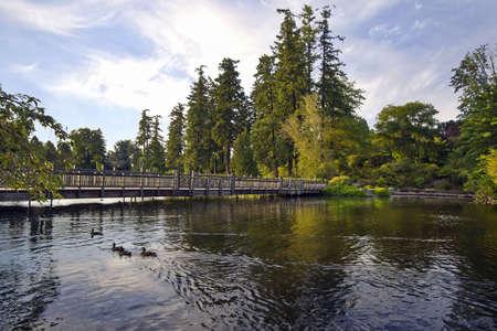 Bridge Over Crystal Springs Lake with Ducks Swimming photo