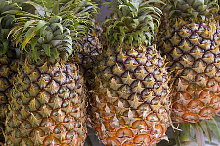 Pineapple at Fruit Stand in Tropical Country