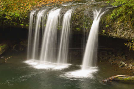 Upper Butte Creek Falls in Scotts Mills Oregon Stock Photo - 7898507