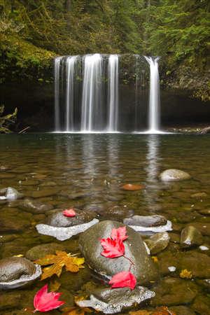 Upper Butte Creek Falls in Scotts Mills Oregon 3 Stock Photo - 7898508