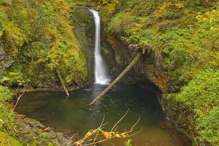 Lower Butte Creek Falls in Scotts Mills Oregon Stock Photo - 7914704