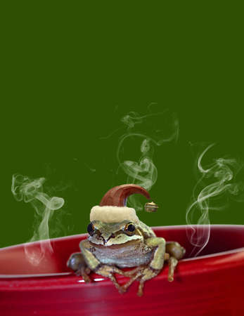 ChristmasTree Chorus Frog with Red Hat Sitting on Red Mug 2 Stock Photo