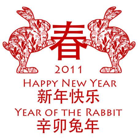 Chinese New Year Rabbits holding Spring Chinese Symbol 2011