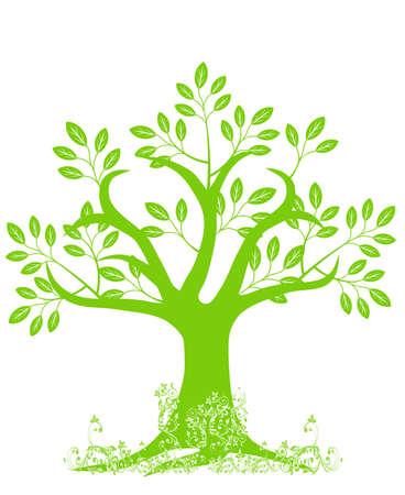 抽象的な木のシルエットの葉と白い背景の上のツル 写真素材