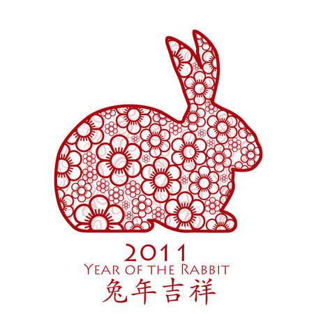 Year of the Rabbit 2011 with Chinese Cherry Blossom Spring Flower Illustration Stock Illustration - 8639613
