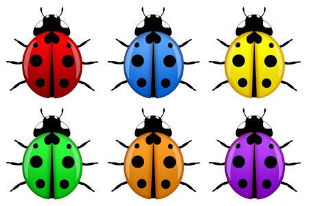 Lieveheersbeestjes in verschillende kleuren geïsoleerd op witte achtergrond illustratie