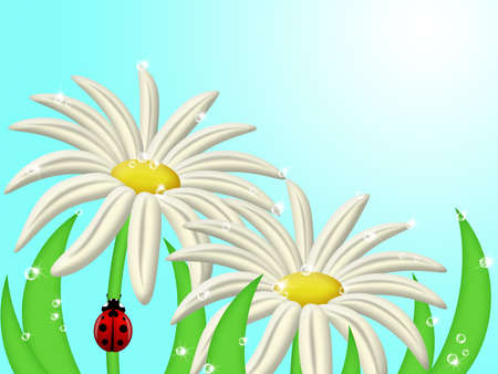Red Ladybug Climbing Up Daisy Flower Stem Illustration