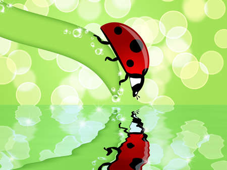 Ladybug on Leaf Looking at Sparkling Water Reflection Illustration