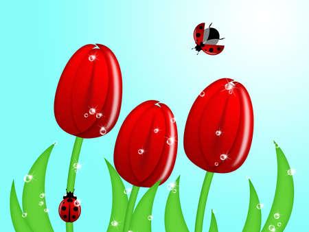 Red Ladybug Climbing Up Tulip Flower Stem Illustration Stock Photo