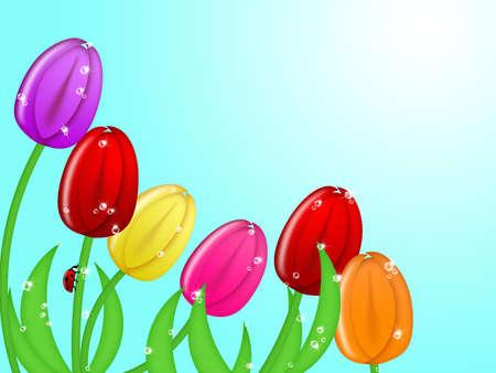 Red Ladybug Climbing Up Tulip Flower Assorted Colors Illustration Stock Illustration - 8860992