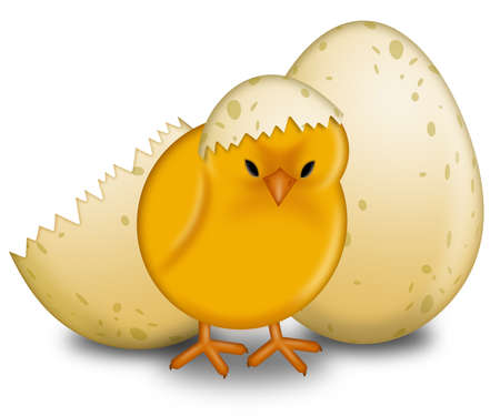 Easter Chick Hatching with Eggshell Illustration