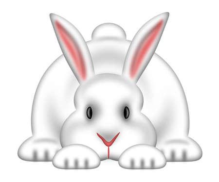lapin: Lapin blanc de lapin de Pâques isolées sur fond blanc Illustration