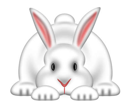 rabbit: White Easter Bunny Rabbit Isolated on White Background Illustration