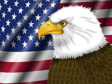 animal head: American Bald Eagle and US Flag Background Illustration