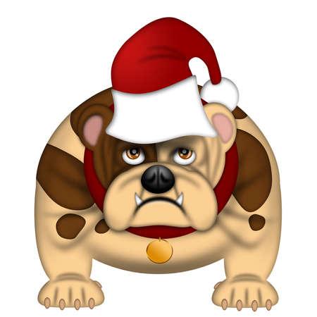 English Bull Dog  with Santa Hat Dressed for Christmas Isolated on White Illustration illustration