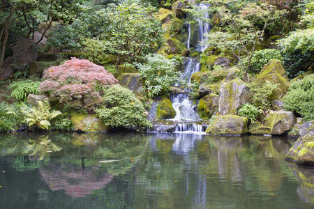 Japanese Garden Koi Pond with Waterfall Maple Trees and Rocks photo