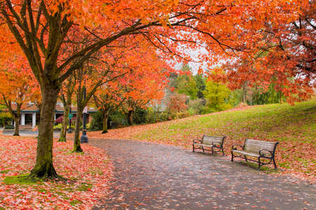 Walking and Biking Park Trails in Portland Oregon Downtown Waterfront in Fall Season Stock Photo