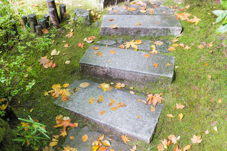 japanese maples: Asian Inspired Garden Granite Slabs Stone Steps with Moss and Fall Leaves Stock Photo