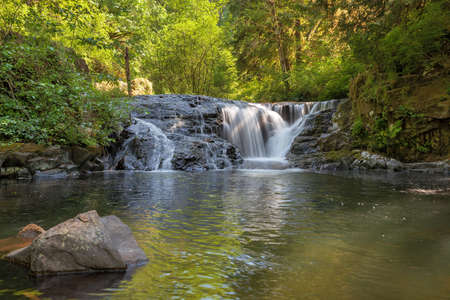 trail: Waterfall along Sweet Creek Hiking Trail Complex in Mapleton Oregon Closeup