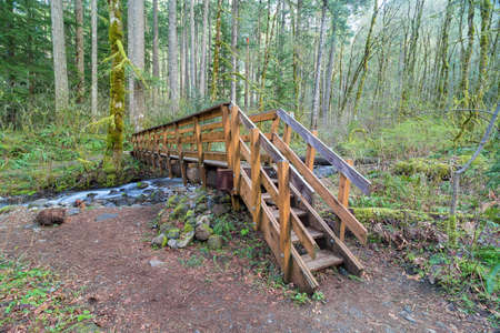 pacific crest trail: Wood Bridge over Dry Creek in Pacific Crest Trail in Columbia River Gorge Oregon Stock Photo