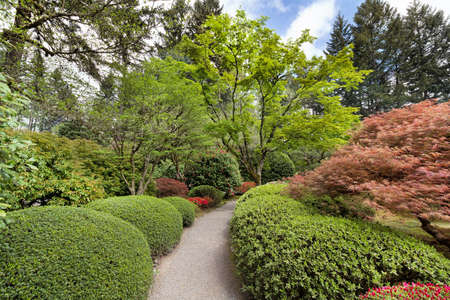 manicured: Garden path lined with lush plants and trees in Portland Japanese Garden in Springtime Stock Photo