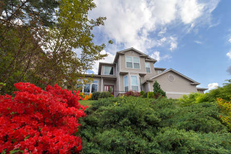 frontyard: Frontyard of Single Family Home in North America Suburban Neighborhood in Springtime