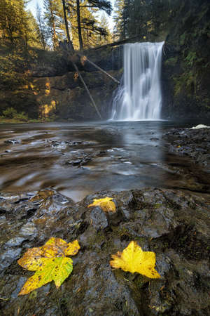 Upper North Falls at Silver Falls State Park Oregon in Autumn