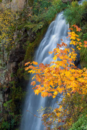 Wah Gwin Gwin Falls at Coumbia River Gorge in Autumn Stock Photo