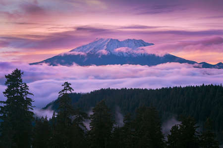 View of Mount St Helens sunset from McClellan Viewpoint in Gifford Pinchot National Forest Washington