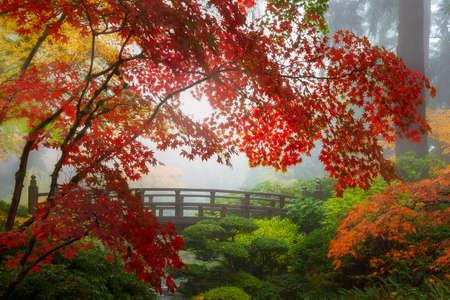 Herfstkleuren door de maanbrug in Portland Japanese Garden one foggy morning