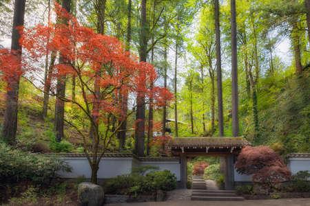 Gateway entrance to Portland Japanese Garden in Spring Season