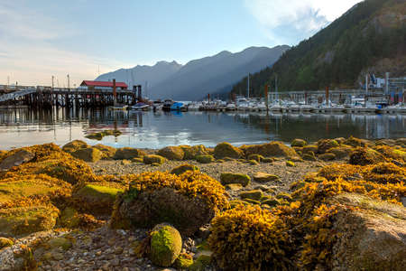 Low tide at Horseshoe Bay in British Columbia Canada on a sunny day Stock Photo