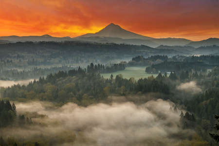 mount hood national forest: Mount Hood over foggy Sandy River Valley at Jonsrud Viewpoint during sunrise