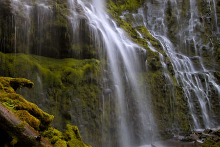 Proxy Falls near Blue River Oregon Closeup 版權商用圖片