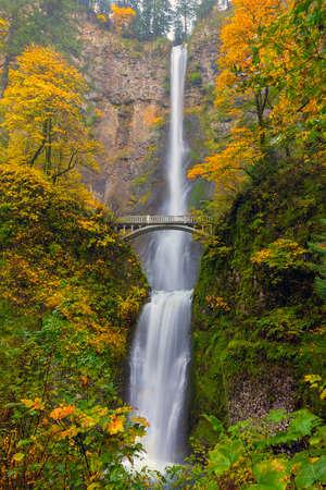 Multnomah Falls in Columbia River Gorge Oregon during fall season 版權商用圖片