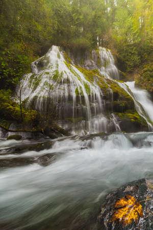 Panther Creek Falls at Gifford Pinchot National Forest in Washington State during Fall Season Stock Photo