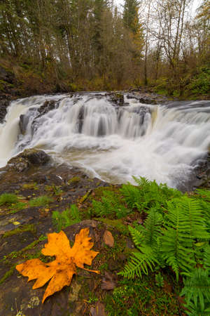 Yacolt Creek Falls at Moulton Falls Regional Park in Clark County Washington State in Fall Season