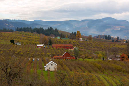Fruit Orchard red barns and farmhouses in Hood River Oregon during fall season